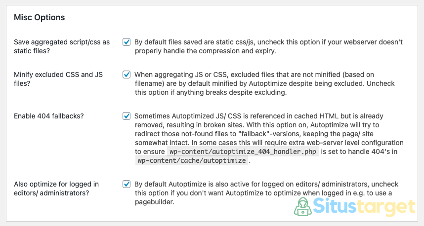 Pengaturan Pada Misc Options Plugin Autoptimize